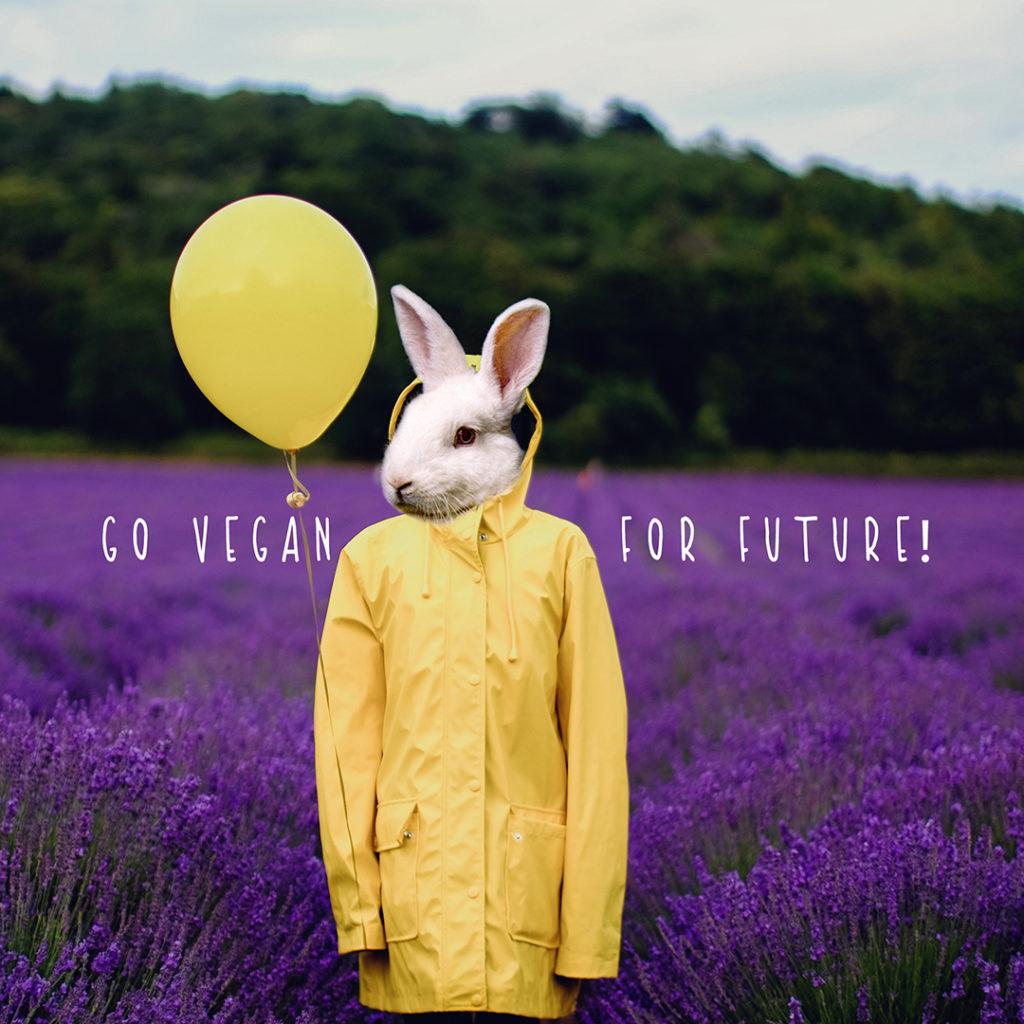 Rabbit - Go vegan for future!