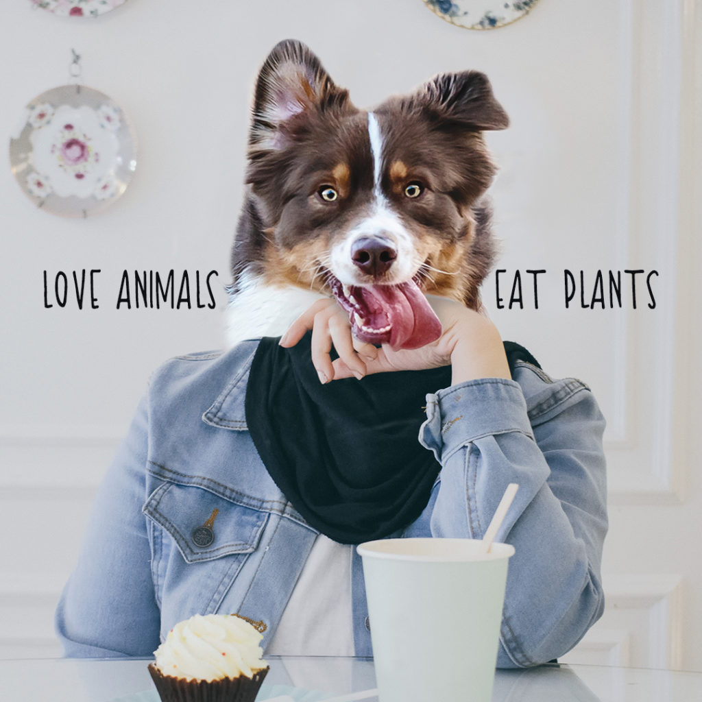 Dog - Love animals eat plants