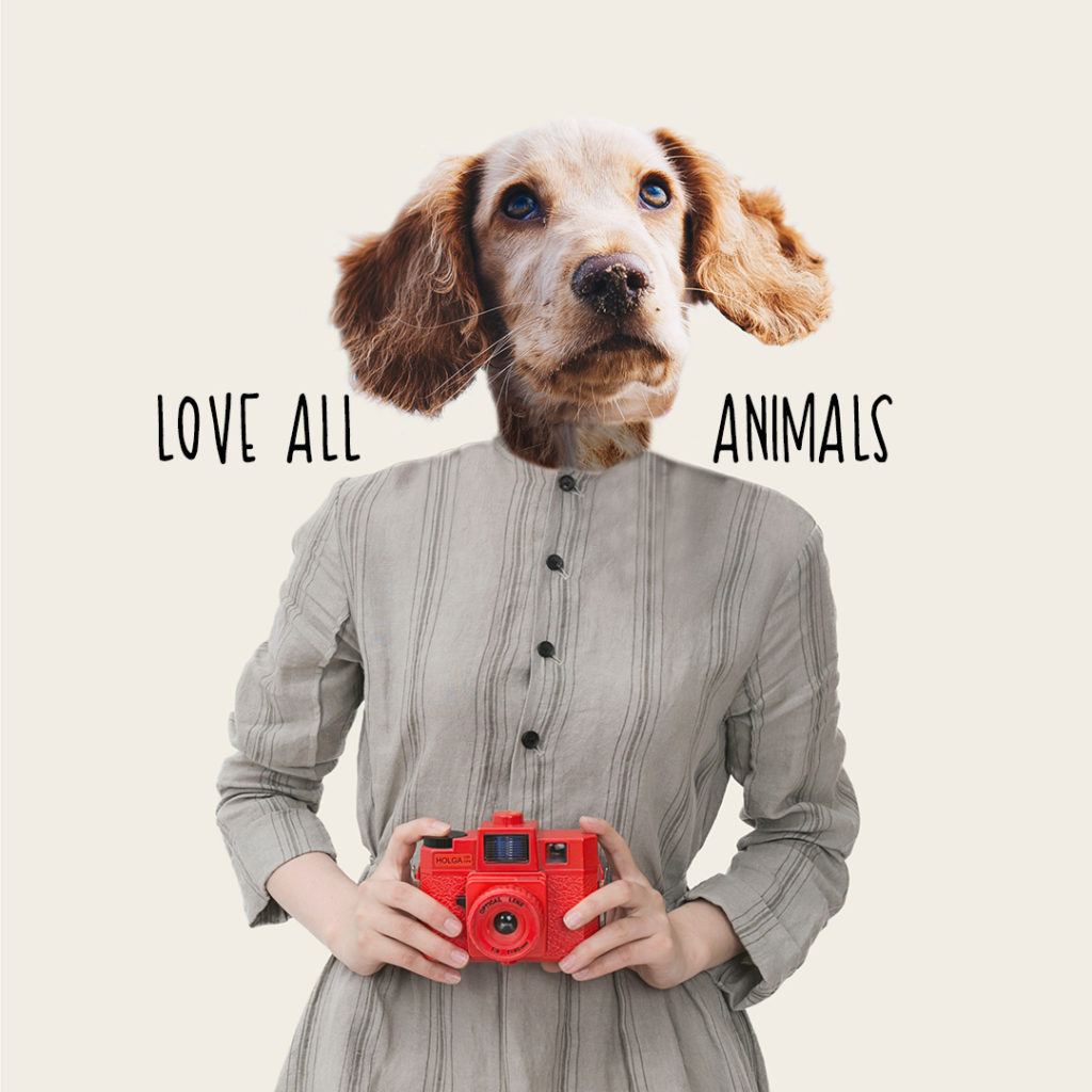 Dog - Love all animals