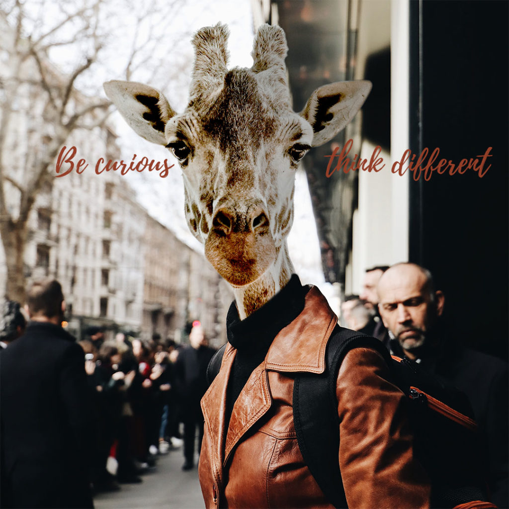 Giraffe - Be curious think different