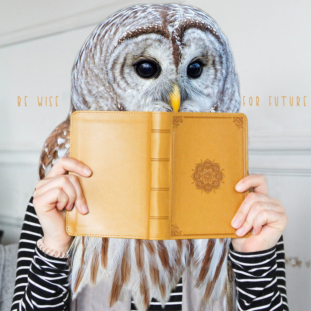 Owl - Be wise for future