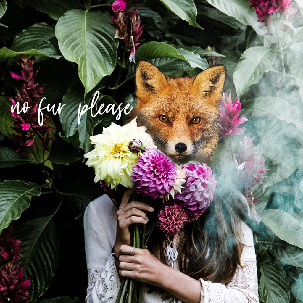 Fox - Animalia mundi